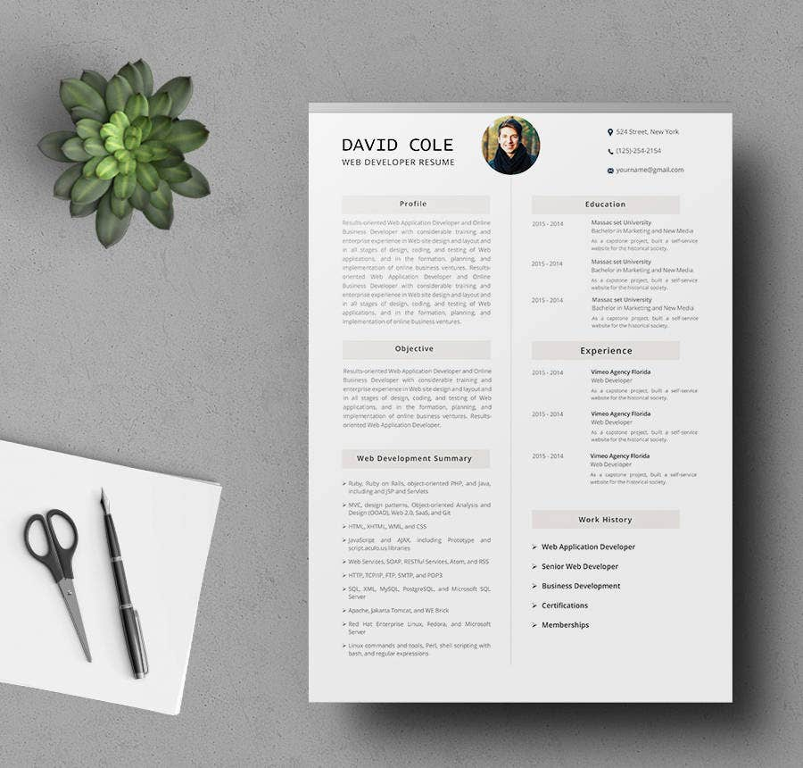 Web Application Developer Resume Template