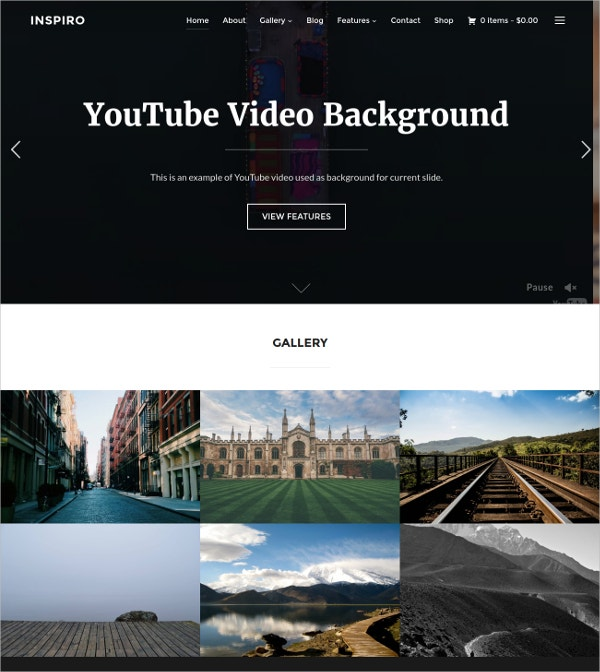 Professional Photo & Video WordPress Fastest Theme $69