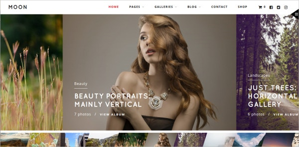 WordPress Theme for Photographers Multiple Gallery $59