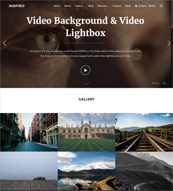 Professional Photo Gallery WordPress Theme $69