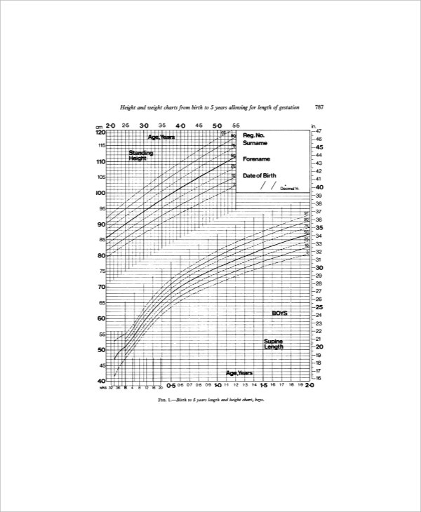 sample toddler height and weight chart for boy