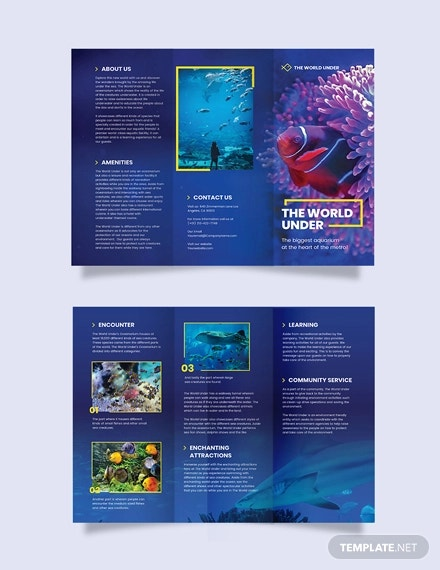 aquarium tri fold brochure template