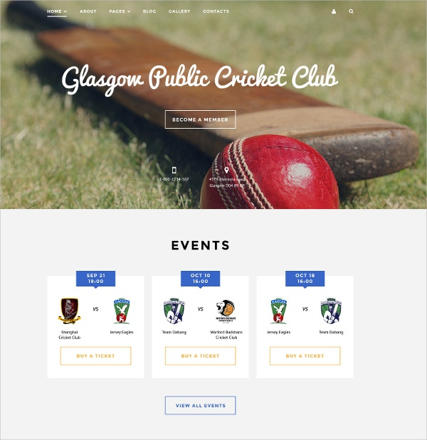 Cricket Club Portfolio Joomla Website Template $75