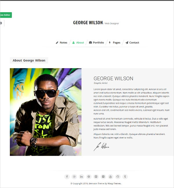Personal Music WordPress Website Theme $39