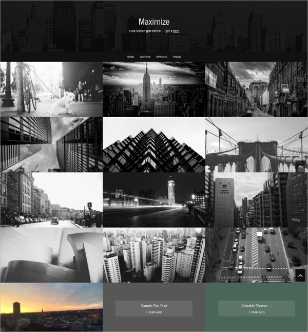 photo gallery tumblr theme
