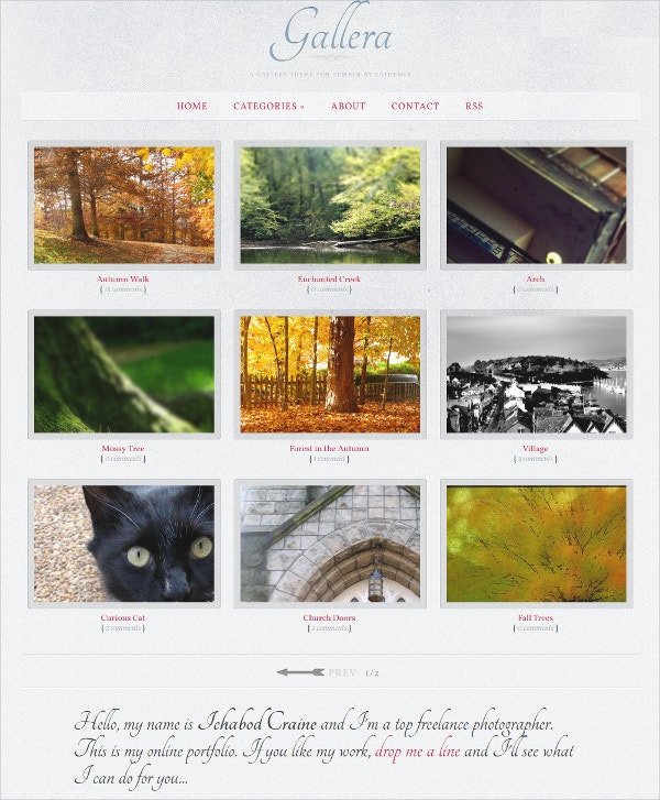 Elegant Photography Tumblr Theme $16