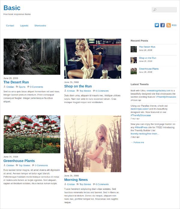 free premium responsive website theme