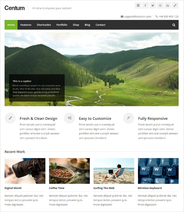 responsive minimal wordpress theme 44