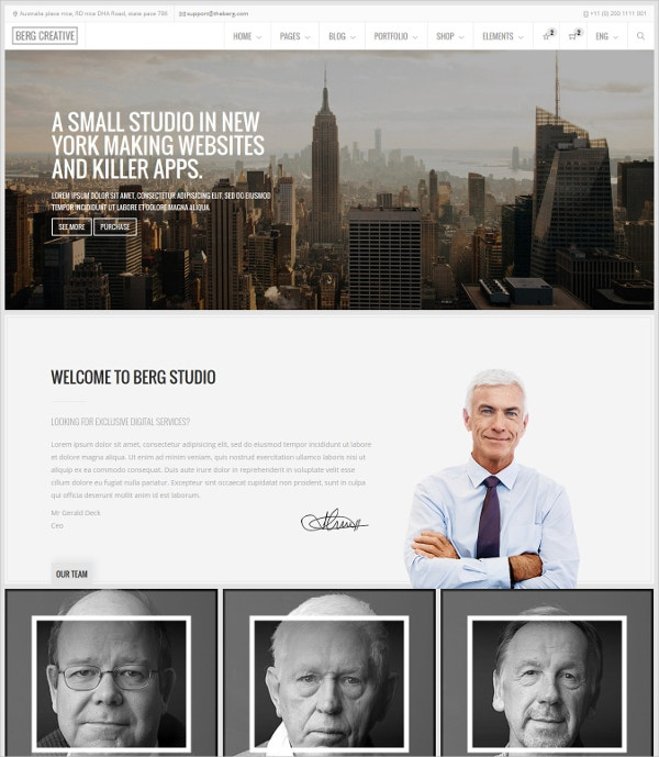 Multipurpose Responsive Website Theme $49