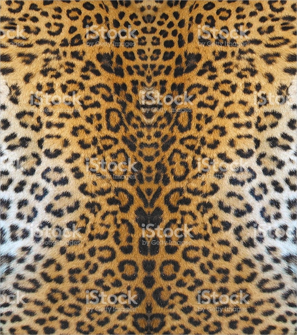 leopard leather pattern