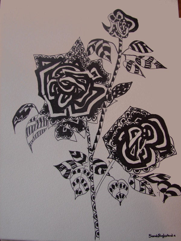 Rose Zentangle Drawing