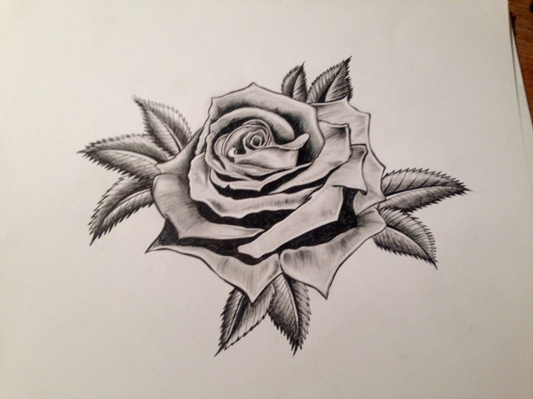 Pair of Rose Drawings
