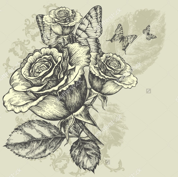 Floral Background with butterflies rose Drawing