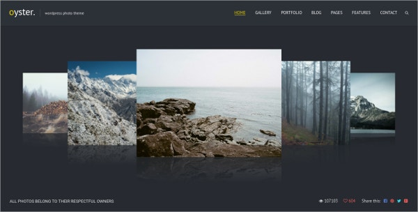 photo portfolio wordpress website theme 59