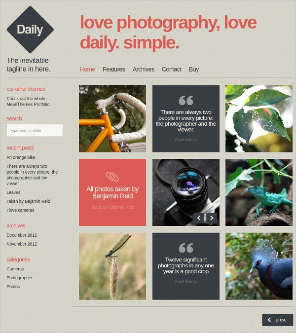 Beautiful WordPress Website Blog & Photo Theme $39
