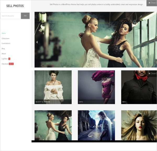 Responsive Design Photo WordPress Website Theme $99