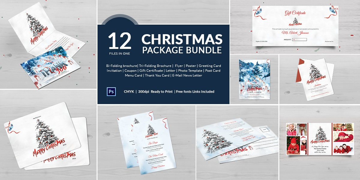 14 Best Christmas Package Templates Bundle
