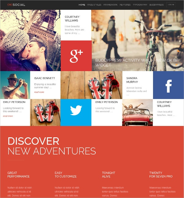 Social Media WP Website Theme