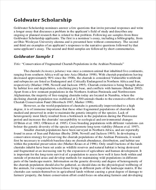 Sample essay for scholarship