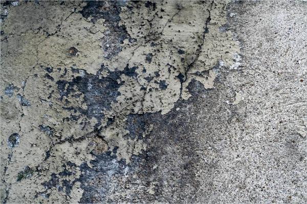 Grunge Wall Plaster Texture