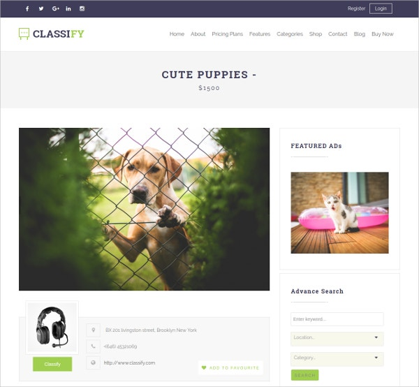 Classified & Directory WordPress Theme $59