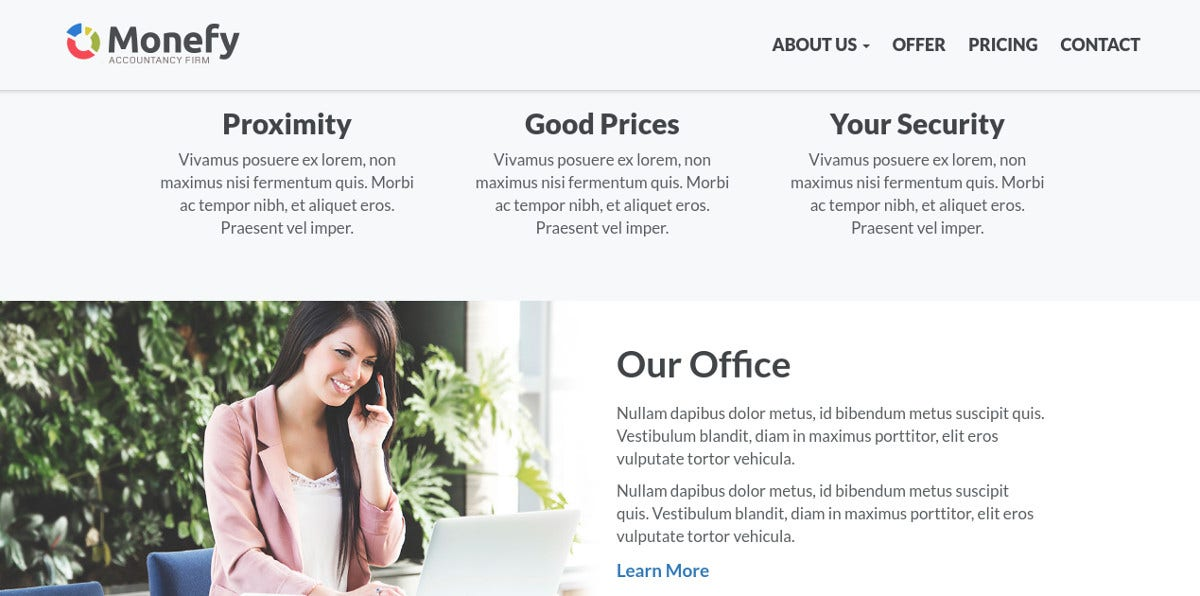 Small Business & Accounting WordPress Website Theme $20