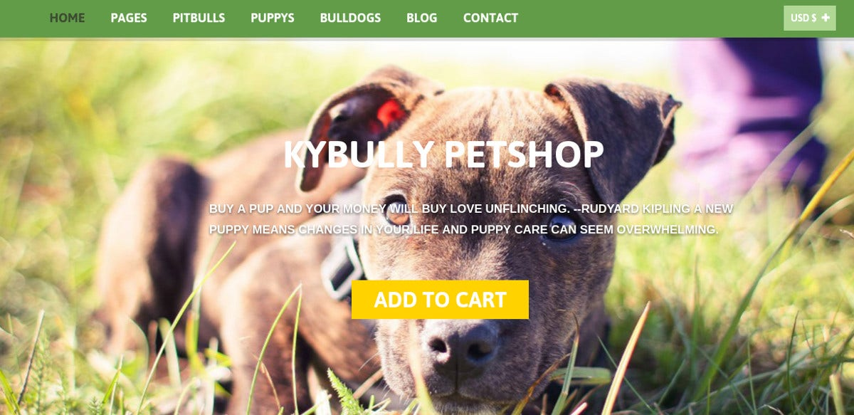 Pet Accessories Joomla Virtuemart Theme $58