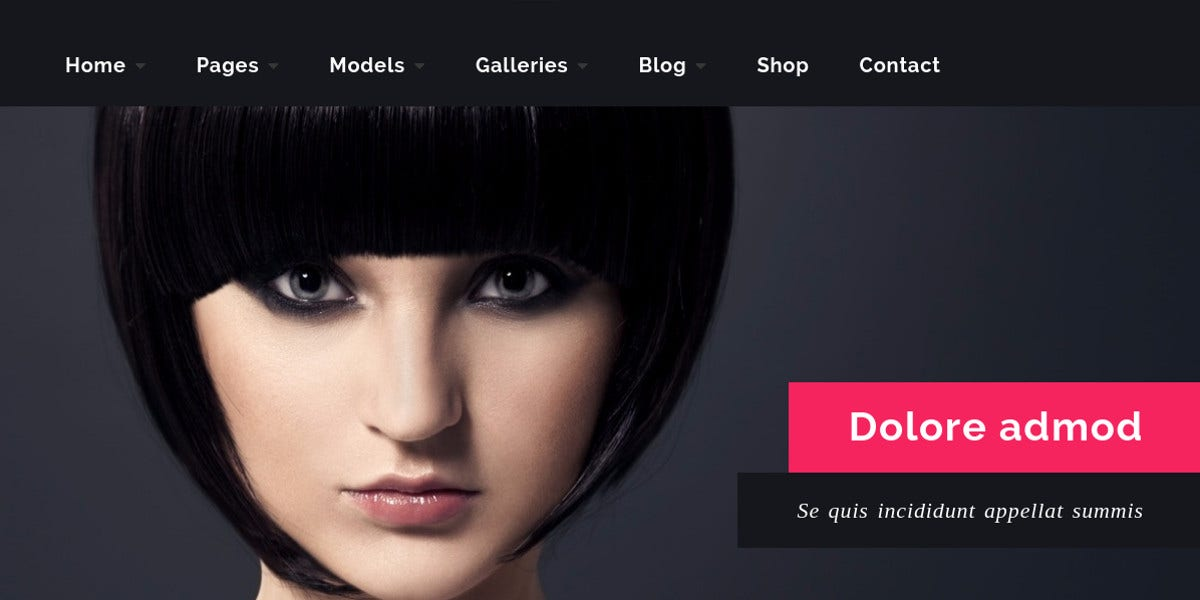 Model Agency Fashion WordPress Website Theme $54