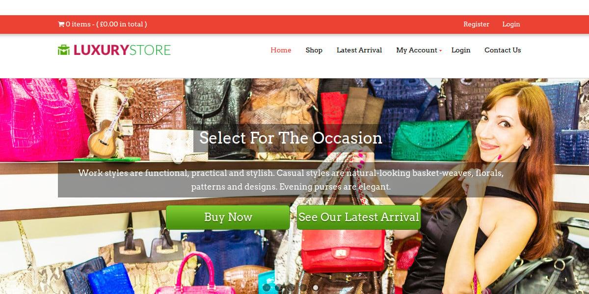 Fashion Store, Bag Boutique WP Website Theme $79