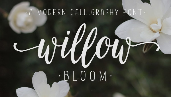 18  calligraphy fonts