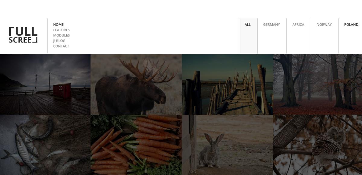 Personal Photography Joomla Website Template $48