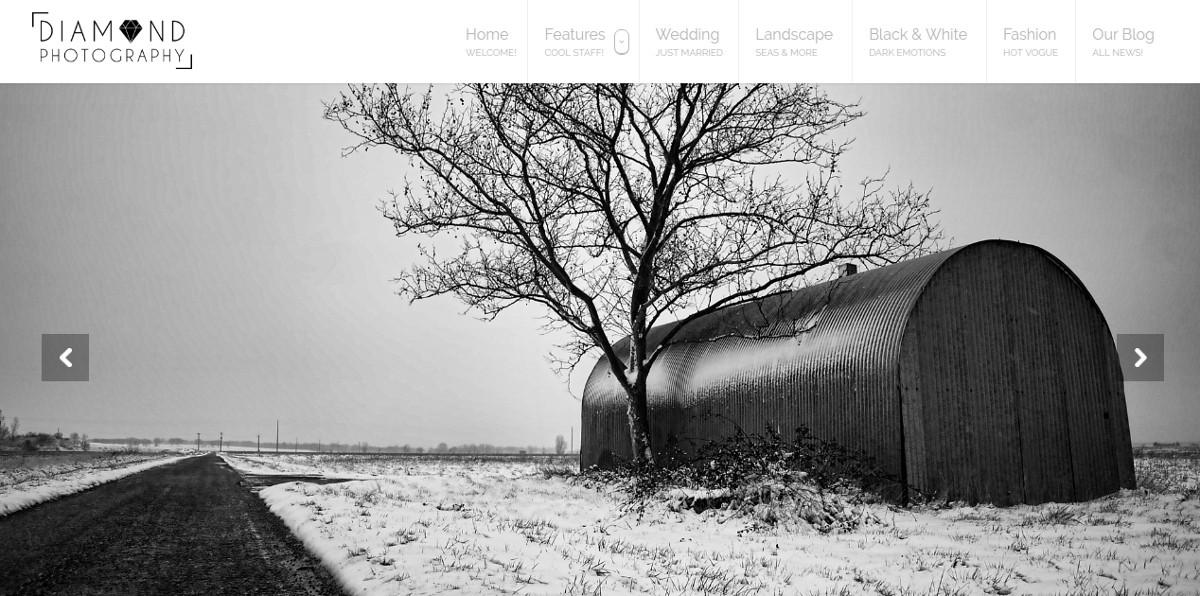 Photographer Portfolio WP Website Theme $149
