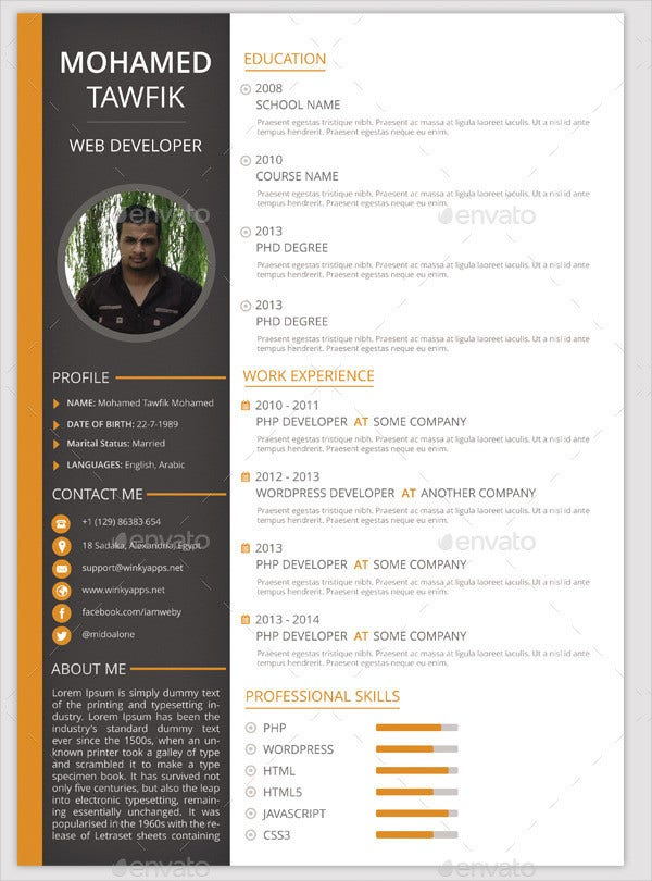 Pack Of 3 Resume Format Templates
