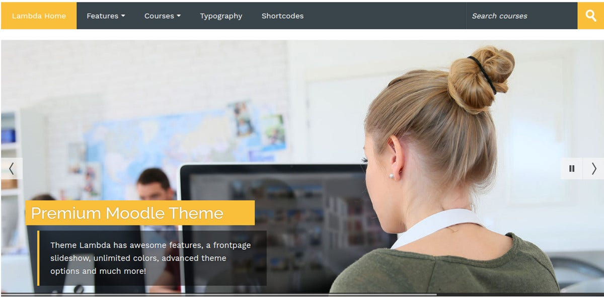 Moodle Professional School Theme $44