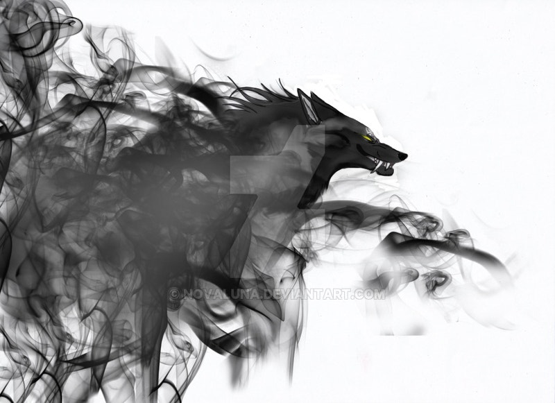 fox-smoke-art-photography