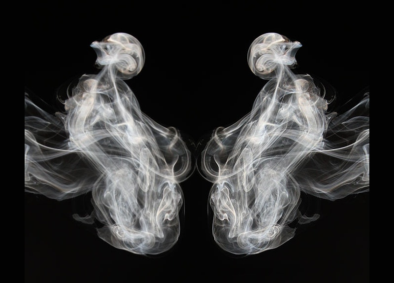 pair of creatures smoke art