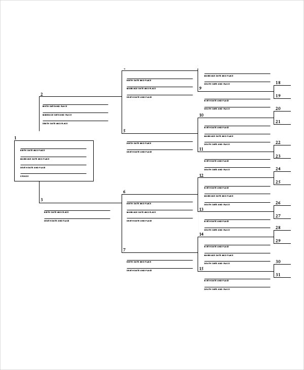 7 Generation Family Tree With Vital Statistics Template