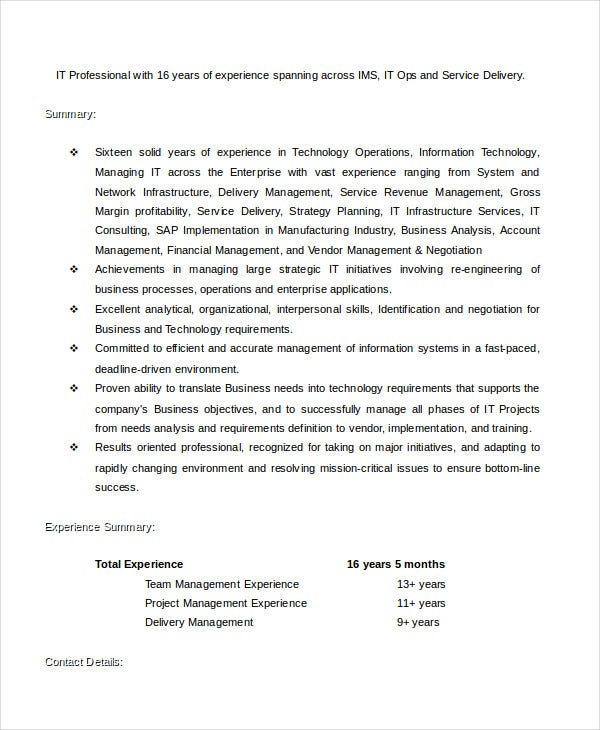 it-proffesional-cv-template