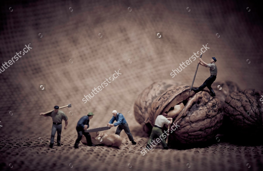 miniature-workers-working-at-walnut