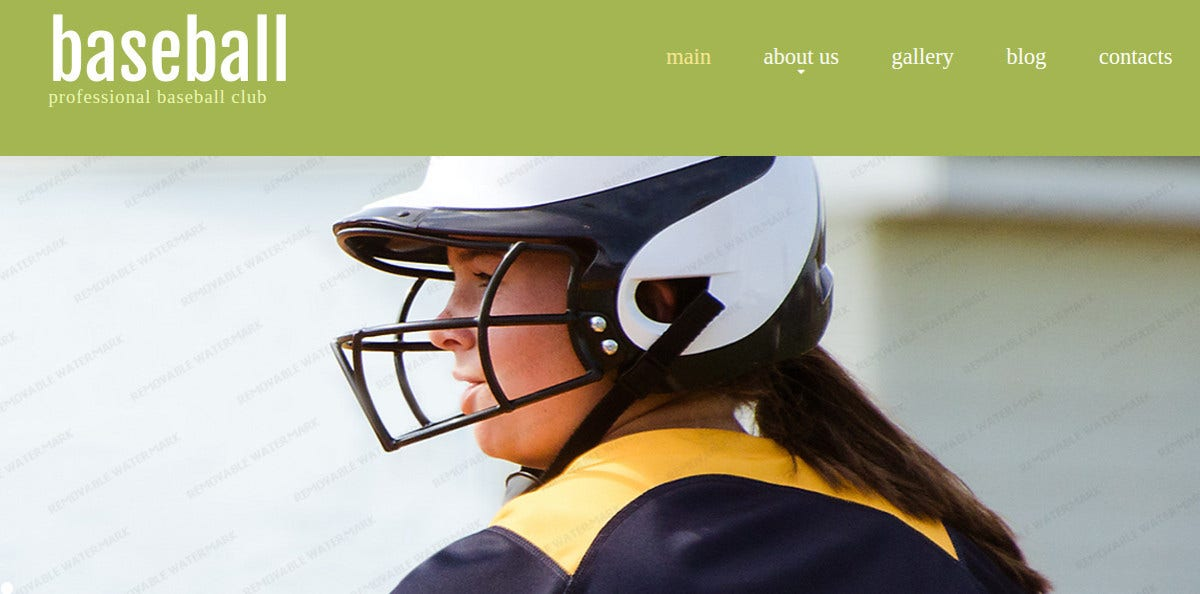 Baseball Club Website Template