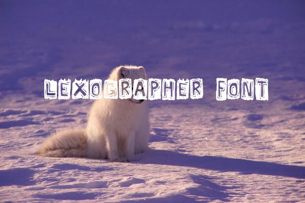 lexographer scribble font