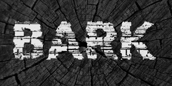 Bark Grunge Font