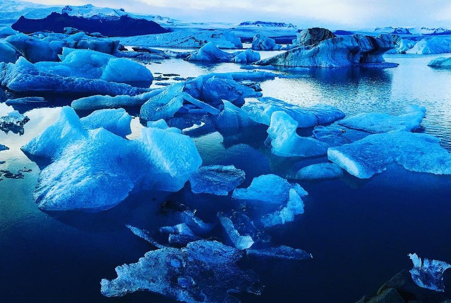 sea blue icebergs floating on water