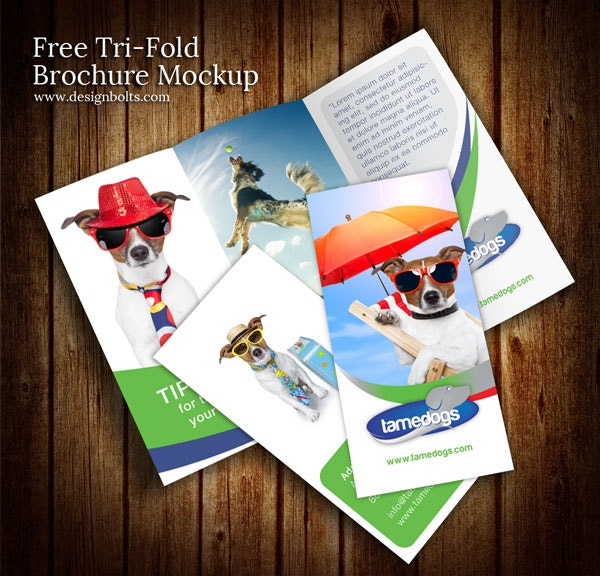 free tri fold brochure design template