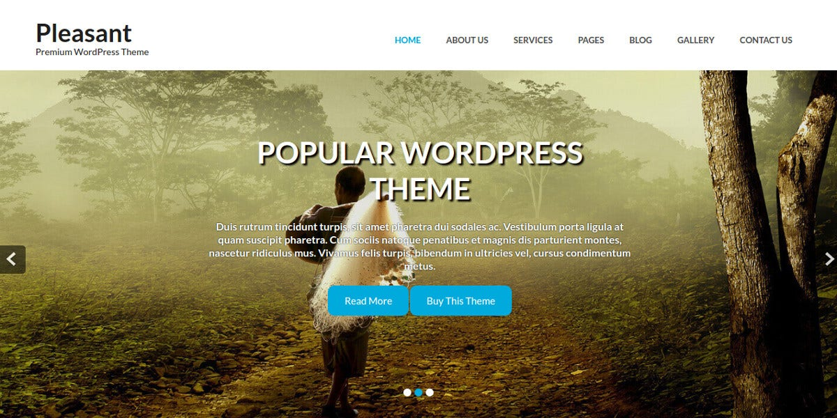 Top New WordPress Themes