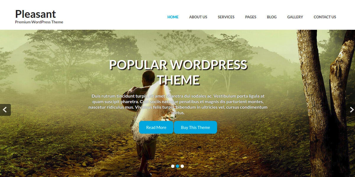Top Free Responsive WordPress Themes