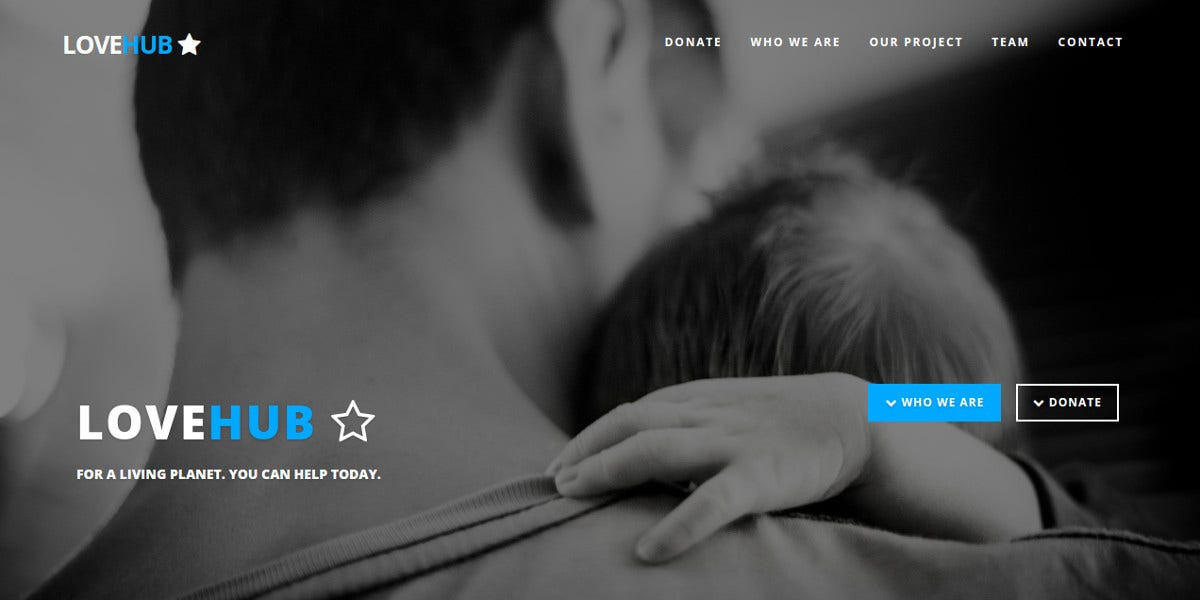 One Page Landing Page Theme for Non Profit $8