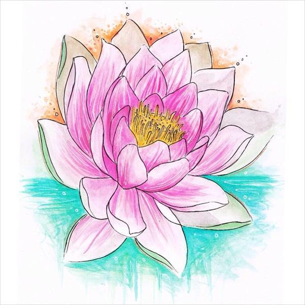Lotus Flower Drawing