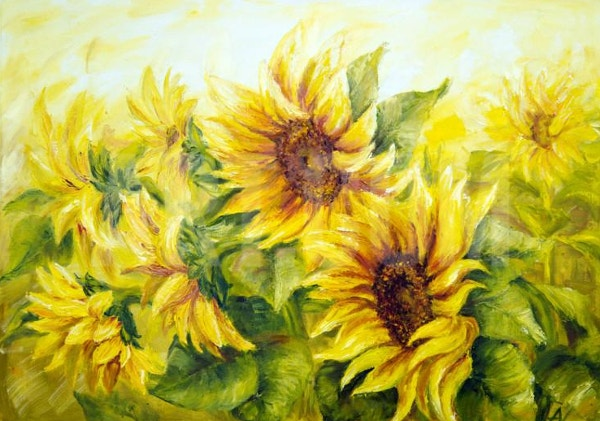 Sun Flower Drawing