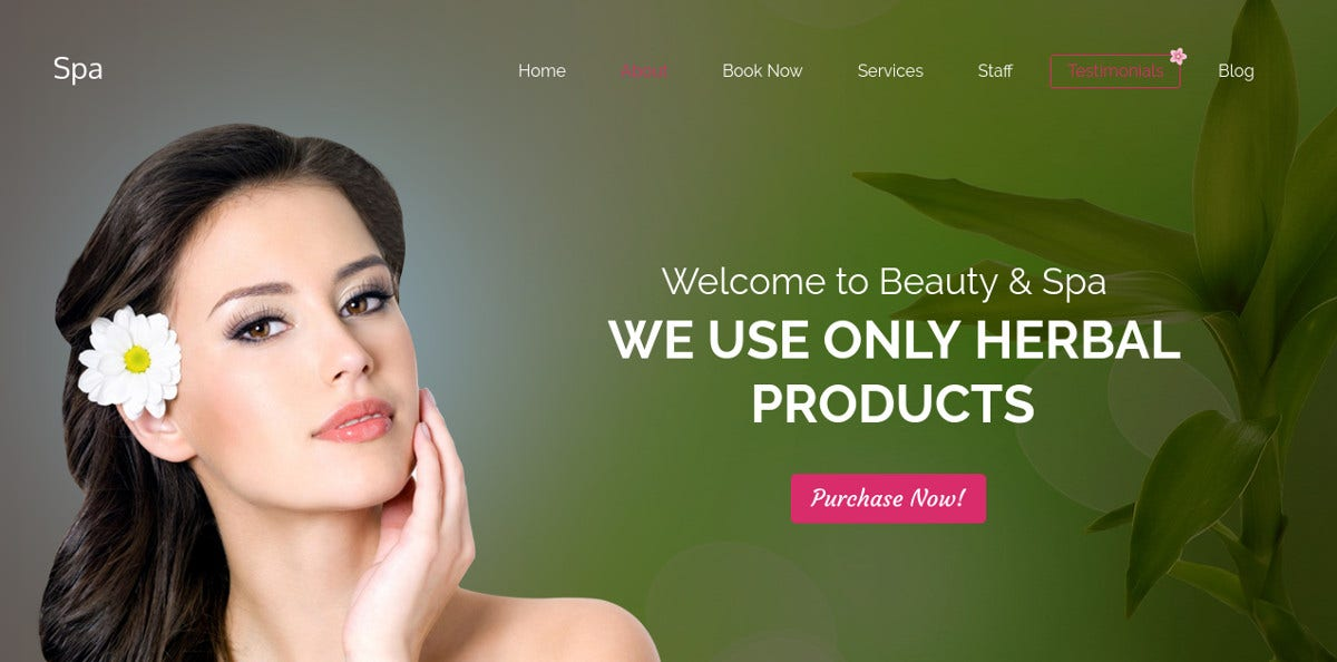 Best Spa WordPress Landing Page Responsive Theme